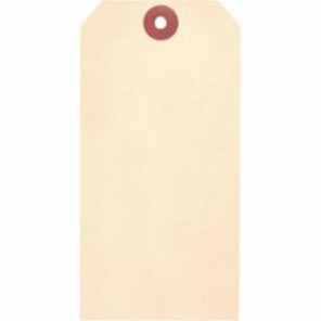 Accuform® TBB116P Blank Tag, 2-5/8 in H x 5-1/4 in W, 3/16 in, White, Cardstock
