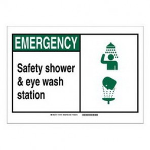 Brady® 119994 Fire Safety Sign, 5 in H x 7 in W, Black/Green on White, Self-Adhesive Mount, B-946 Vinyl