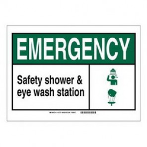 Brady® 120015 Fire Safety Sign, 5 in H x 7 in W, Black/Green on White, Self-Adhesive Mount, B-946 Vinyl