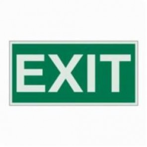 Brady® 59329 BradyGlo™ Rectangle Evacuation Sign, 3 in H x 6 in W, Light Green on Green, Self-Adhesive Mount, B-324 Glow-In-The-Dark Polyester